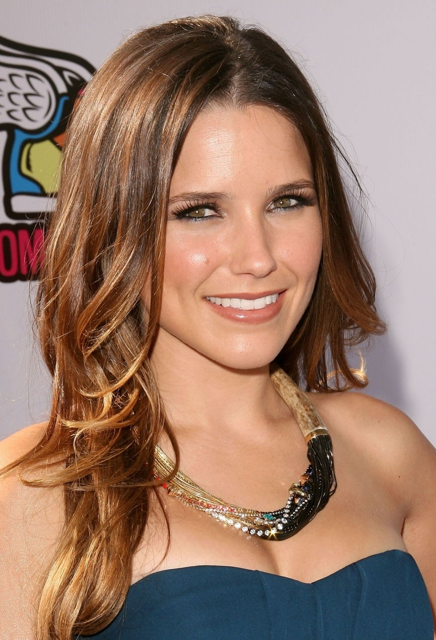 image Sophia bush the hitcher