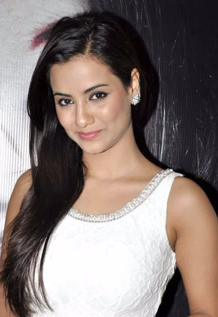 Television began in 2006 after she made her breakthrough as laxmi