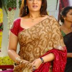 Aarthi Aggarwal Bra Size, Age, Weight, Height, Measurements