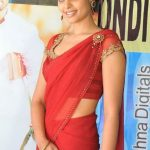 Bindu Madhavi Bra Size, Age, Weight, Height, Measurements