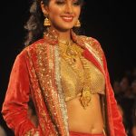 Geeta Basra Bra Size, Age, Weight, Height, Measurements