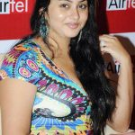 Namitha Bra Size, Age, Weight, Height, Measurements