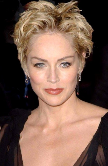 sharon stone plastic surgery before and after celebrity