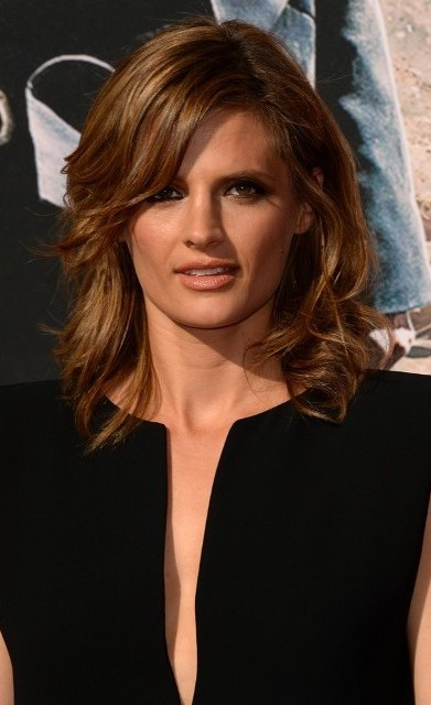 Stana Katic Plastic Surgery Before And After Celebrity Sizes