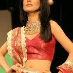 Amrita Rao Diet Plan