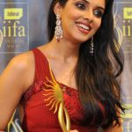 Asin Net Worth