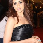 Genelia D'Souza Net Worth