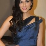 Kriti Sanon Net Worth