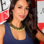 Malaika Arora Khan Net Worth