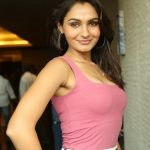 Andrea Jeremiah Net Worth