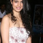 Tina Desai Net Worth