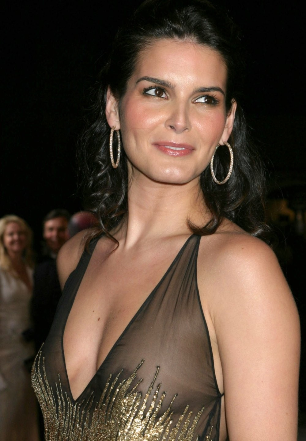 Angie Harmon born August 10, 1972 (age 46) nudes (33 foto and video), Sexy, Is a cute, Twitter, lingerie 2017