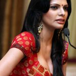 Sherlyn Chopra Net Worth