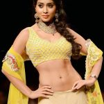 Shriya Saran Workout Routine