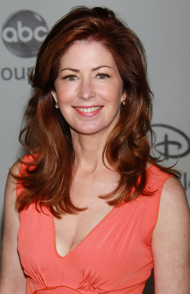 Dana Delany Diet Plan Celebrity Sizes