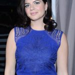 Casey Wilson Diet Plan